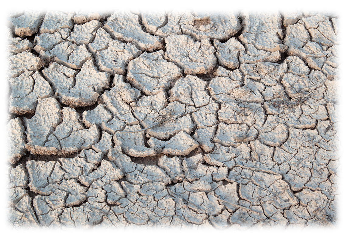 Equipment considerations: Dry cracked earth