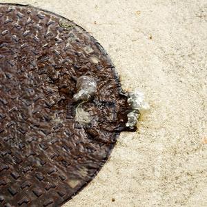 Overflowing manhole image
